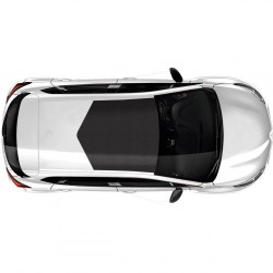 Interface Car Styling Roof Wrap Sticker